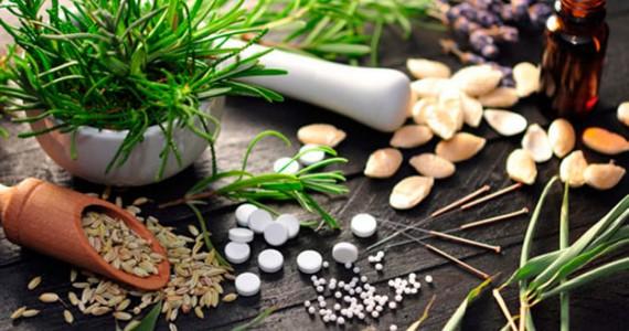 Aprovada Política Nacional de Plantas Medicinais e Fitoterápicos